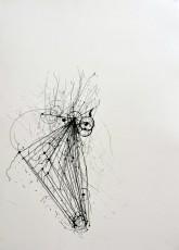 2, marqueur sur papier, 70 x 50 cm