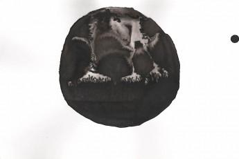 Sans titre-9, 10x15 cm