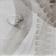 poussière sur papier déchiré, 50x50cm